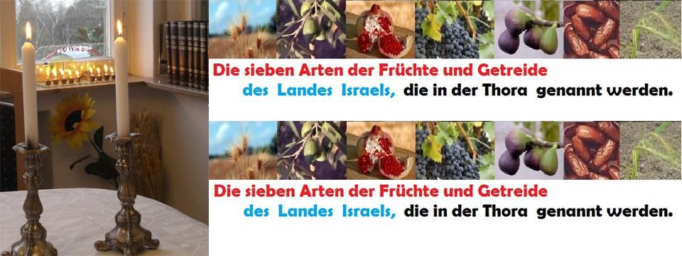WOW-Bibel-7-Arten